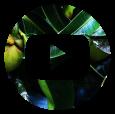 thp-icon-youtube